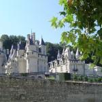 loire-valley-chateau-dusse_800x600