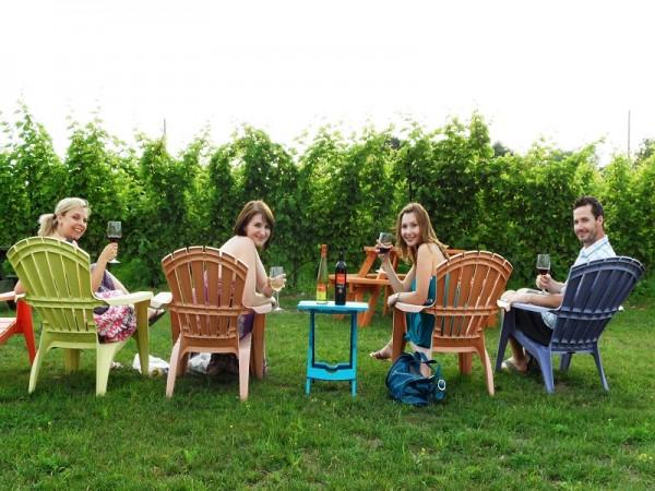 picnic-wine800x600