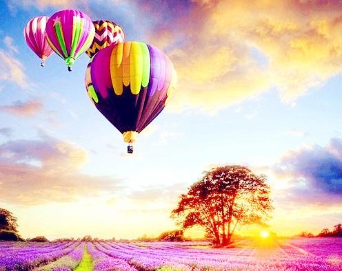 普罗旺斯薰衣草热气球探险游